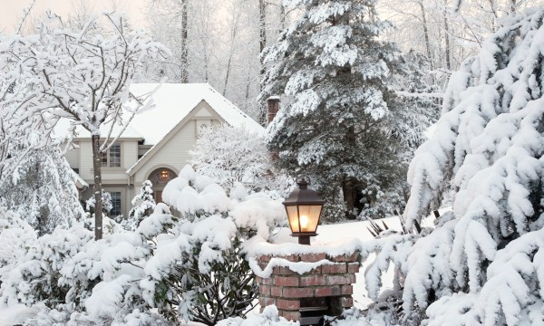 How to plan a garden for cold winters