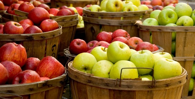 Places to go apple picking in Toronto and the GTA