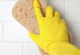 How to get rid of black mould in the bathroom