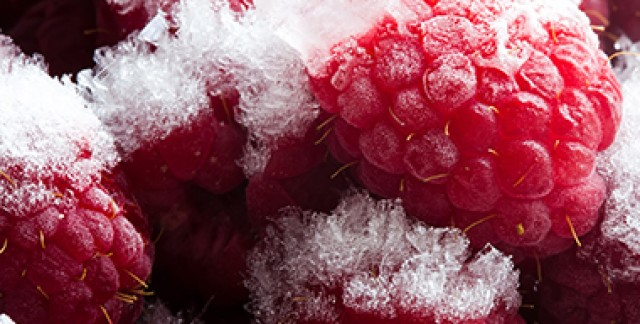 4 easy fixes for a frosty freezer