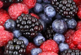 2 simple ways to preserve fresh berries