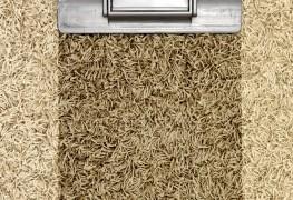 3 important steps for repairing wet carpet