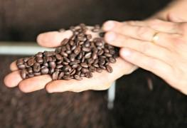 B.C.'s best coffee roasters