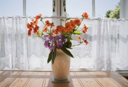 Five low maintenance cut flowers for your home