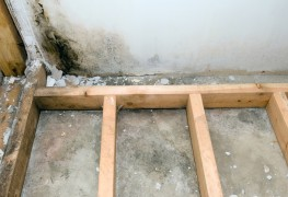 What to do when your basement floor is damp