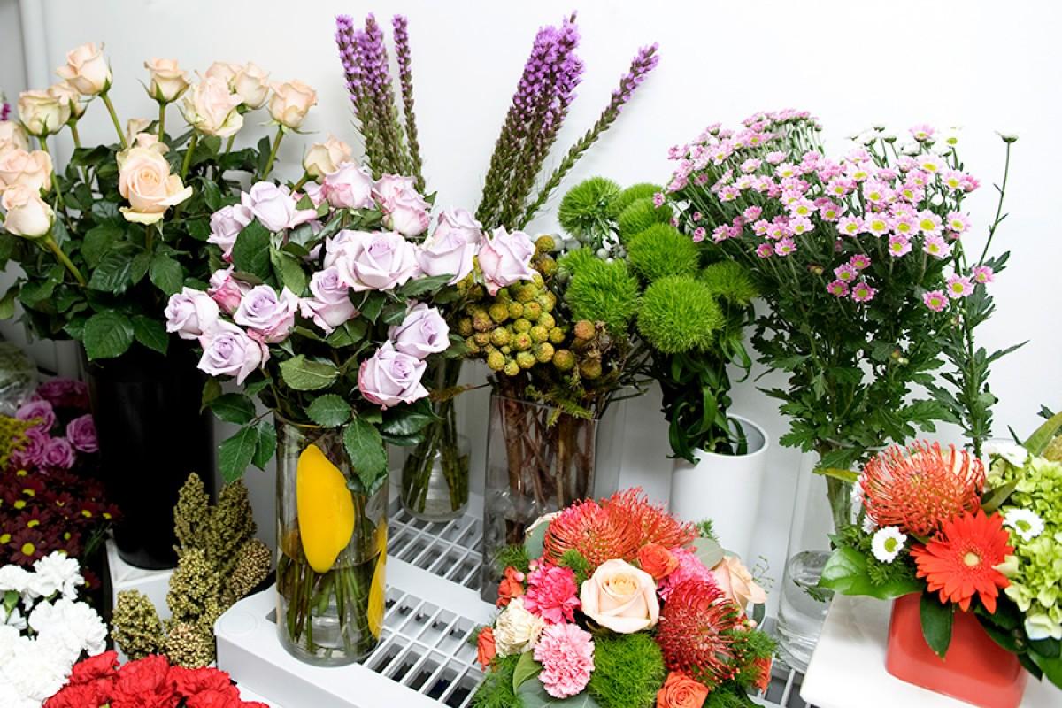 Divine flowers toronto business story divine flowers izmirmasajfo
