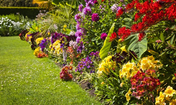 Easy Fixes for Garden Annoyances