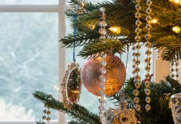 3 simple and eco-friendly alternatives to a Christmas tree