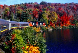 All aboard! Scenic train rides to try this fall near Toronto