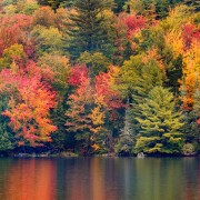 Where to see the best fall foliage in Canada