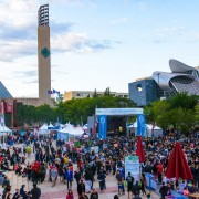 9 mouth-watering Edmonton food festivals this summer