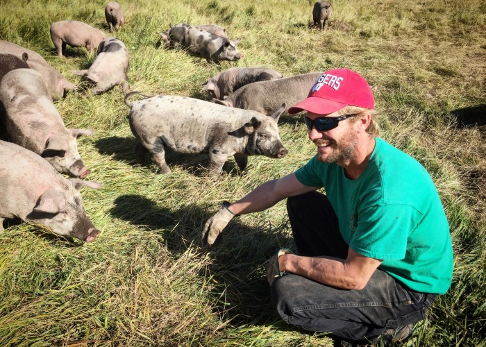 Greener Pastures Ranching raises their pigs outside