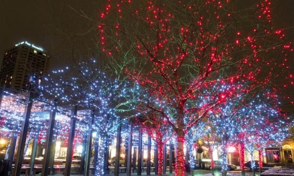 Free holiday season events in Toronto