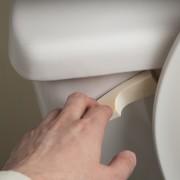 How do I repair that foghorn toilet noise?