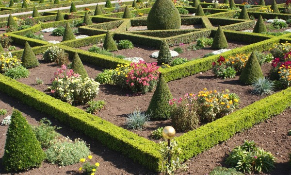 6 ideas for creating a knot garden in your own backyard | Smart Tips