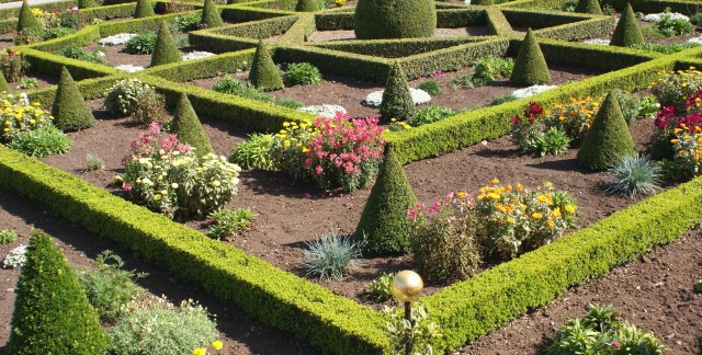 6 ideas for creating a knot garden in your own backyard