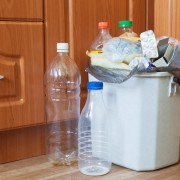 How to deter kitchen pests naturally