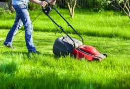 6 tricks that make lawn mowing easier and grass healthier