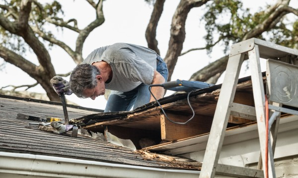 How to remove mould and mildew from your roof