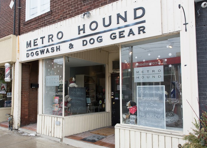 Metro hound toronto business story metro hound do it yourself dog bathing dog grooming elevated bath solutioingenieria Images