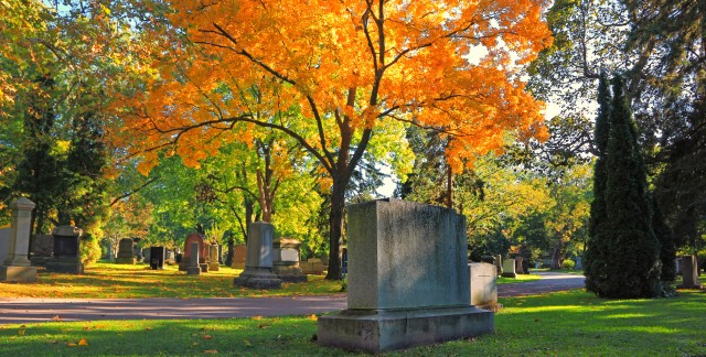Haunted walks and tours in Toronto and the GTA