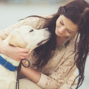 4 signs your pet suffers from arthritis