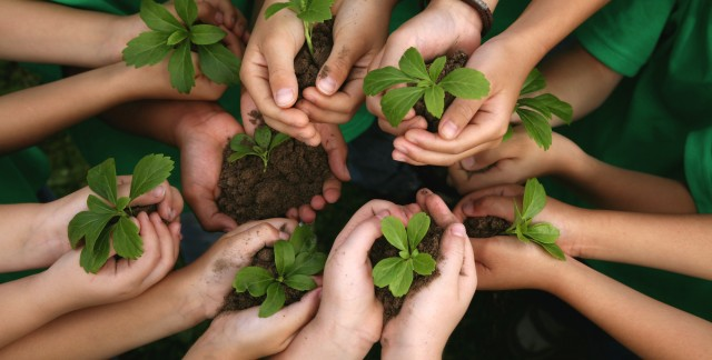 11 things you can do each day to honour Earth Day