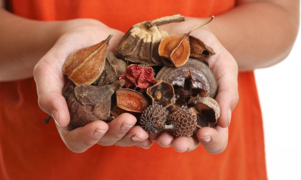 How to create your own beautiful scents with potpourri