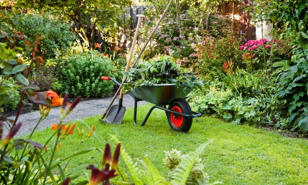 4 things to consider when preparing the perfect garden site