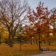 10 places to visit in Toronto this fall