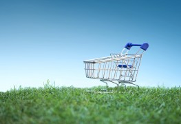 Shopping responsibly to promote a better world