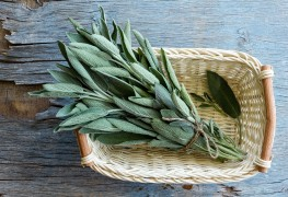 Sage advice: 4 uses for the versatile herb