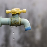 12 easy tips to conserve water at home