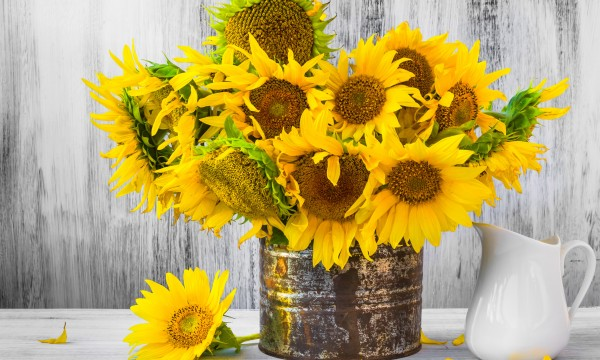 Sunflower arrangements for a vase or bouquets smart tips