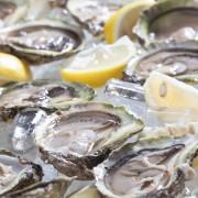 The immune-boosting benefits of zinc