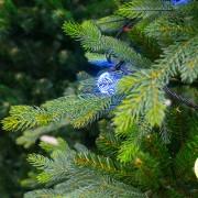 The December debate: Natural or artificial Christmas tree?