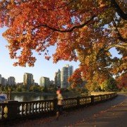 8 great reasons to visit Vancouver this fall