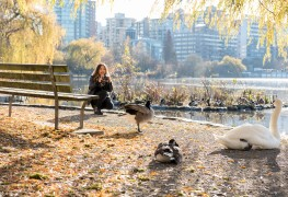 10 ways to play in Vancouver's Stanley Park
