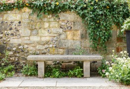 What kind of garden wall or fence should you build?