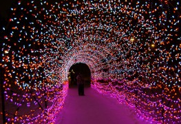 Light up Calgary: 10 places to see Christmas lights this holiday season