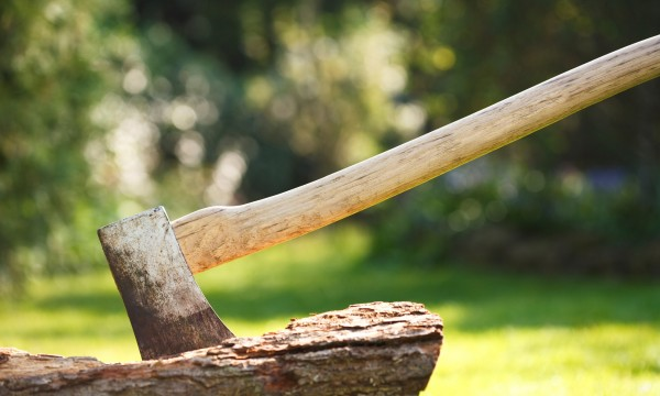 Strategies to finding the right firewood