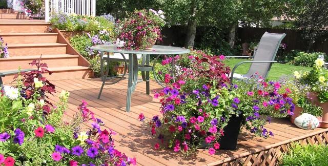 8 inspiring ideas to transform your backyard into an oasis