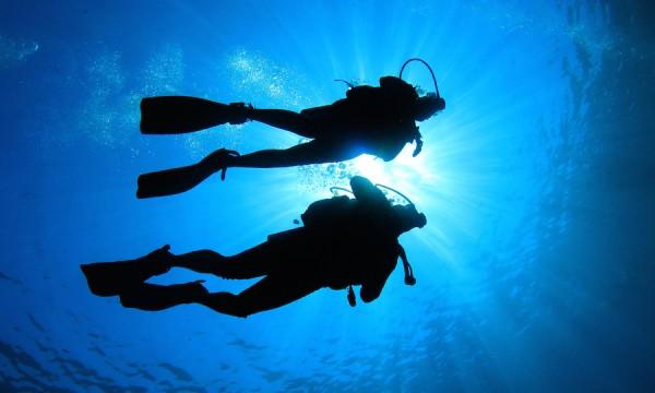 Happy bubbles! Is scuba diving for you?