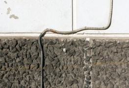5 questions to ask about outdoor wiring