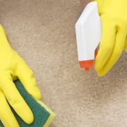 Tips for removing 8 types of carpet stains