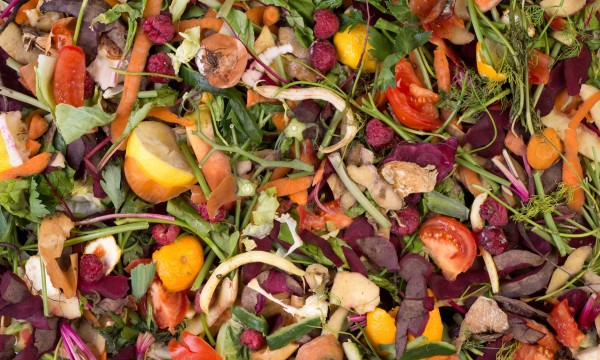 Compost and fertilizer tips for your garden