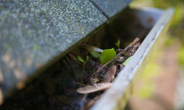 4 tips for cleaning gutters