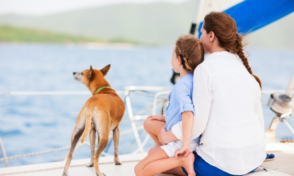 6 tips for bringing man's best friend for a day on the water