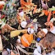 20 unexpected things you can compost