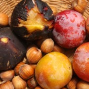 Easy steps to growing figs and plums